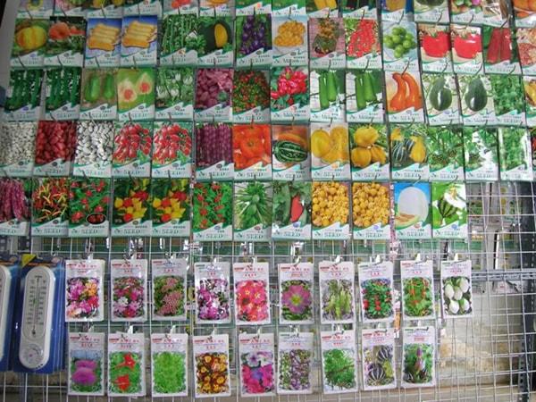 Kinh doanh hạt giống cây trồng và các sản phẩm liên quan