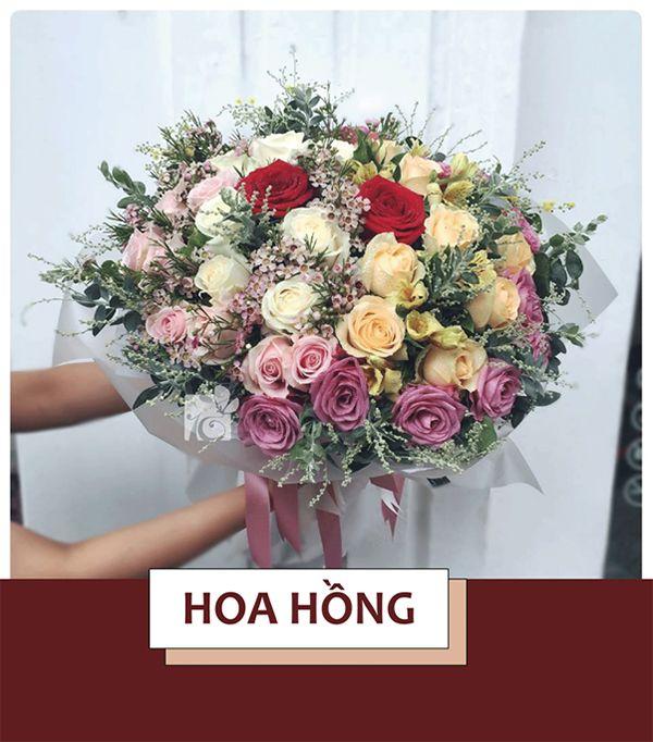 Hoa Hồng là loài hoa thường để tặng bạn gái nhân ngày 8/3