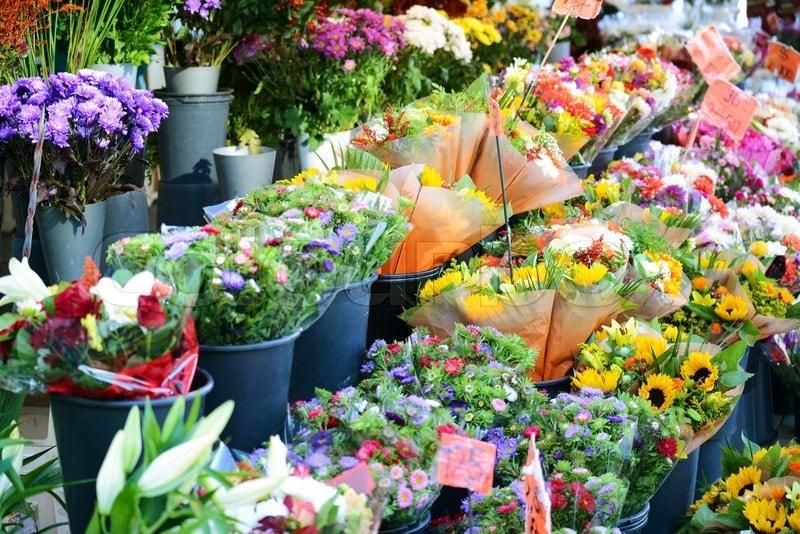 Thăm dò thị trường hoa online trước khi kinh doanh